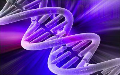 التطبيب الذبذبي: منهج فكر وتطبيق عملي لمعرفة علم الذبذبة